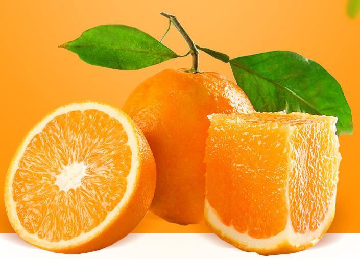 秭归脐橙批发建议选择果农家