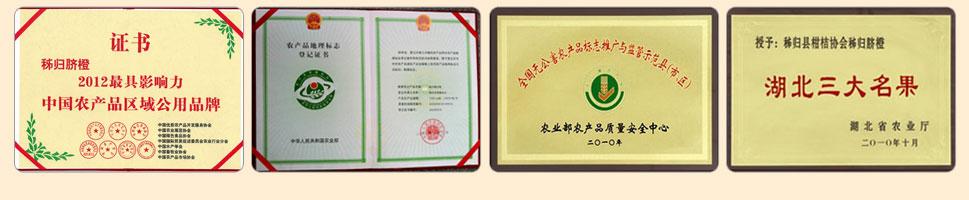 湖北省农业厅颁发:湖北三大名果奖牌给秭归县柑桔协会